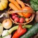 旬の新潟野菜を堪能できるおすすめレストラン5選