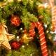 クリスマスケーキ調査第2弾!新潟市西蒲区『ラ・パティスリープレジール』の限定ケーキ