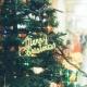 クリスマスケーキ未予約者必見!新潟市中央区・フランス菓子『ルーテシア』のケーキがハンパない…!