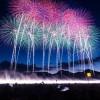 新潟県の有名な花火大会7選!見どころや会場へのアクセスについてまとめました!