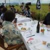 「アウトスタンディングモーメントin新潟」体験レポ!田んぼの真ん中で日本酒を堪能してきました♪