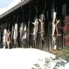 【新潟冬の観光スポット】越後村上鮭塩引き街道!お土産やランチ情報もチェック!