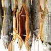 【塩引き鮭】村上鮭の美味しい食べ方&人気店5選。通販でのお取り寄せ情報も!【鮭とば】