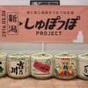 【新潟地酒】旅と食と地域をつなぐ日本酒『新潟しゅぽっぽ』が発売から三年!今年は新商品「あまざけ」が販売開始!
