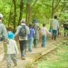 【ファミリー・初心者向け】日帰りできる!新潟市周辺の登山スポット6選!